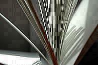 Les critiques de la semaine sur nonfiction.fr dans Critiques, notes de lecture, feuilletons, analyses, présentations 0af7f2aec86493b4c361dae2b0de6bbc-20
